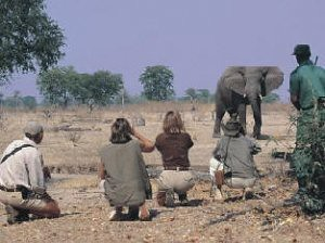 TOURS AND SAFARIS-Camping and Lodge Safaris Tour Travel Agent by Nature man2