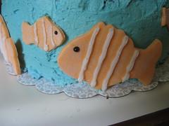Nemo fish - closeup