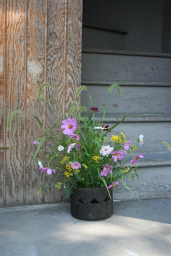 Ikebana- Grasses, Cosmos and field flowers