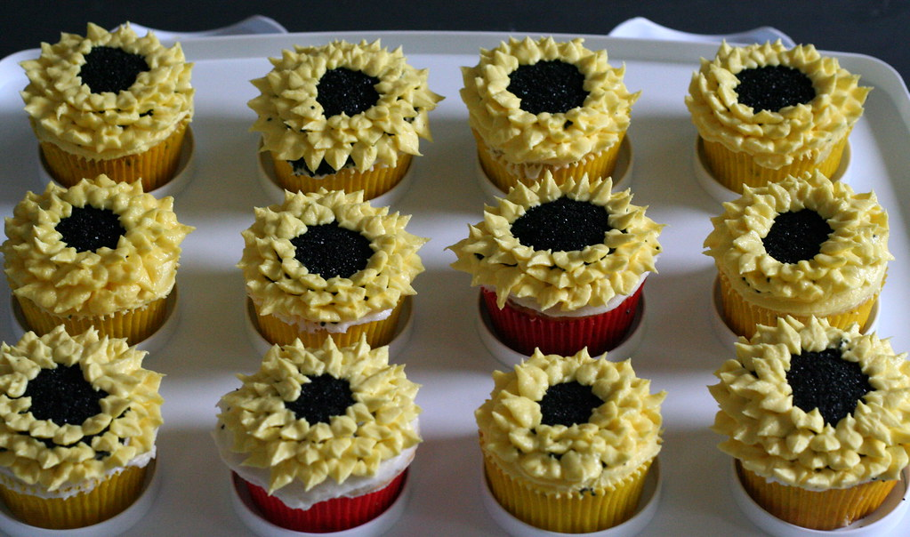 field of cupcakes