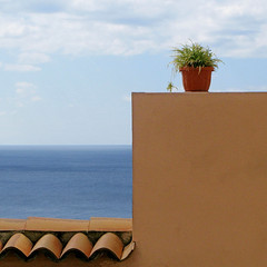 a look at west (pannaphotos) Tags: blue roof sea sky plant west wall clouds square landscape terracotta horizon perspective tiles vase calabria lightblue ovest occidente amantea pananphotos phittonia