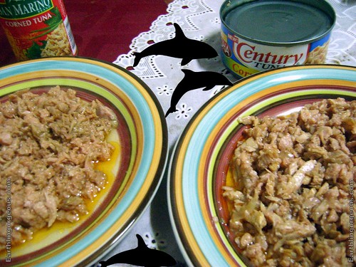 San Marino vs Century Corned Tuna