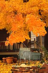Autumn Antiques (groboski) Tags: autumn orange tree brick fall leaves wheel silver fire maple bricks foliage pots antiques cart leafy autumnal
