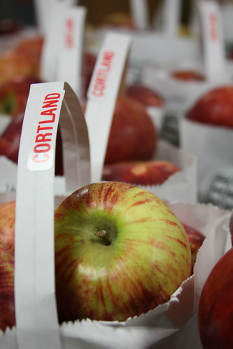 Cortland Apples from Plymouth Orchards, MI