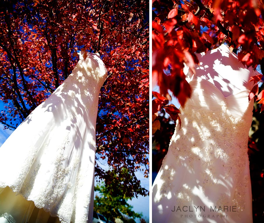 Fall color wedding dress in tree