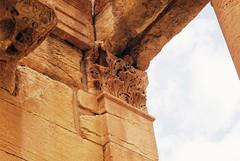 Pillaster Carving Palmyra