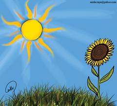 *زهرة عباد الشمس..أسطورة من اليونان (zoom_artbrush) Tags: شمس زهرة أشعة عشب عباد دوار تباع