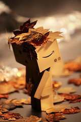 (The Dolly Mama) Tags: fall leaves toy toys japanese sad down it cant help sometimes dumps forlorn danbo revoltech danboard