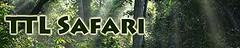 Safari 1 copy