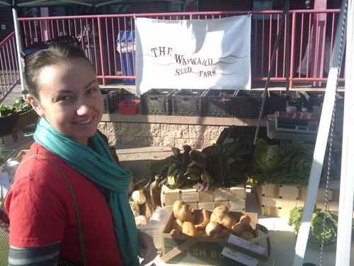 shopping the wayward seed stand at north market