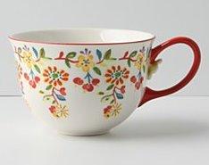 Anthro.mug2