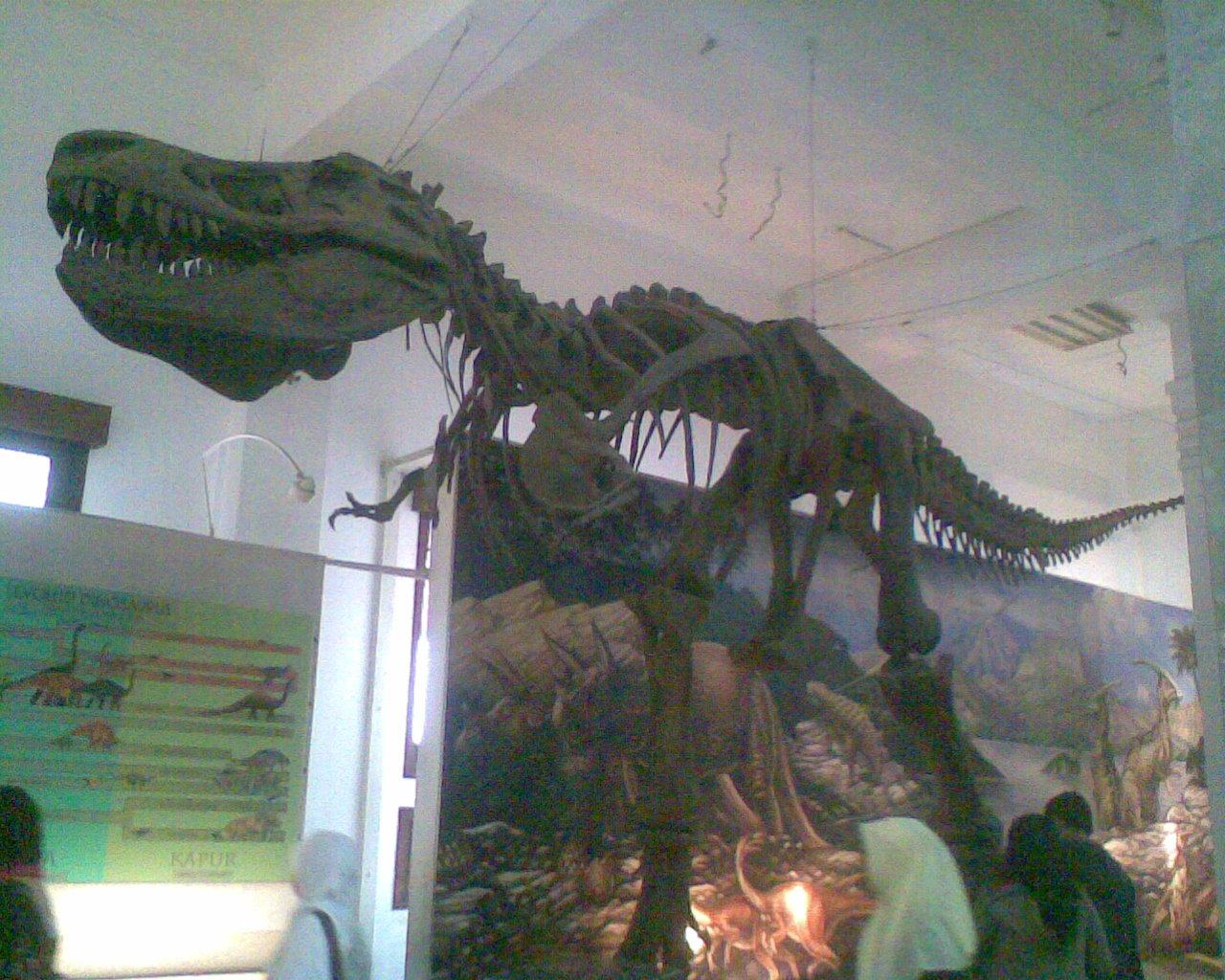 awas ada t-rex!