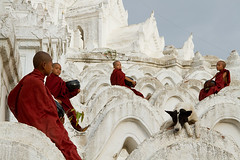 monks and friend (NVH) Tags: monks myanmar mandalay youngmonks whitestupa hsinbyuimepagoda weddingcakepagoda