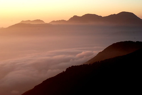 夜半衝合歡山20091205-137