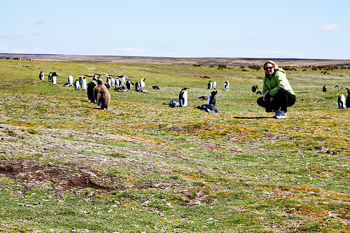 falkland islands 094 copy