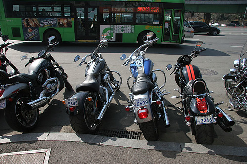 Harleys in Seoul