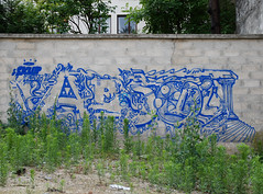 Skub rve d'absolu (lepublicnme) Tags: streetart paris france june graffiti pal skub 2011 skube palcrew
