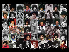 "Michael Jackson - ""The Fro Years"" desktop wallpaper (FROLAB) Tags: life desktop wallpaper never smile magazine michael early ross photos afro young can jackson ali diana stephanie skateboard michaeljackson tribute goodbye mills say jackson5 frolab"
