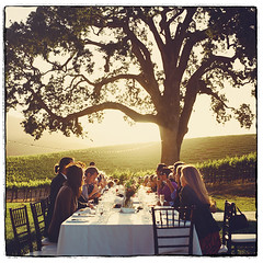 M A R M A L A D E . S U N S E T (* OneLovePhoto.com) Tags: california wedding sunset 120 film night vintage square vineyard hasselblad medium format portra400nc weddings pasorobles 400nc onelovephoto onelovephotocom