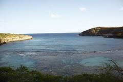 165- Pan #3 (HaYnCaNdi808) Tags: ocean oahu snorkeling hanaumabay