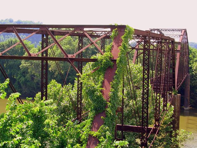 """""""Only Bridge"""" 1"""