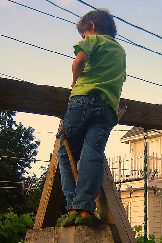 Little Roofer