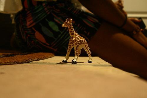 Dena giraffe