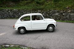 FIAT 600 D (marvin 345) Tags: auto italy classic cars car vintage tn fiat voiture trentino epoca gara salita seicento vecchia fiat600 vecchie valdisole storiche krono pellizzano cronoscalata fazzon fiat600d