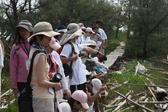 IMG_5990 (TEIA - 台灣環境資訊協會) Tags: 七股 生態工作假期 護沙