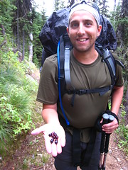 Bob, Long Canyon Trail, Selkirk Mountains, North Idaho.