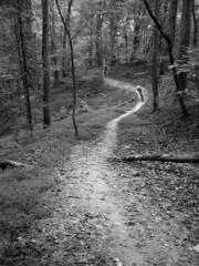 Schaeffer Farm Trails