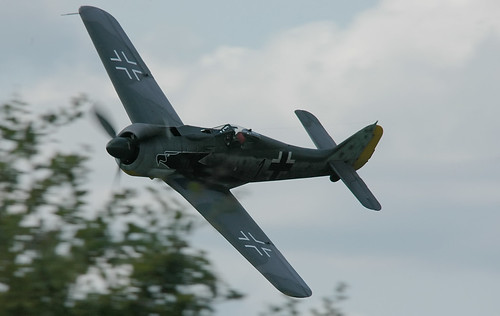 Warbird picture - FW 190