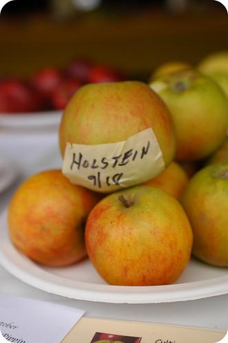 Holstein apple
