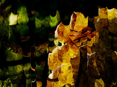 L'or des vendanges (JMVerco) Tags: abstract art photomanipulation digitalart creative astratto hypothetical abstrait création creazione sharingart awardtree jmlinder