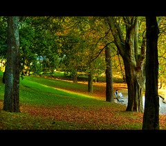 (A.Vale) Tags: woman tree verde green art portugal yellow digital lights mulher banco amarelo porto jardim luzes folha rvore hdr aplusphoto canon450d ilustrarportugal srieouro superstarthebest