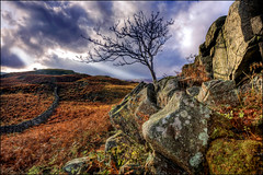 Lone Tree at Eskdale Rocky Outcrop (Mark L Edwards) Tags: tree clouds rocks moody lakedistrict canon5d eskdale shaftsoflight cumbrian colorphotoaward platinumheartaward gnpc