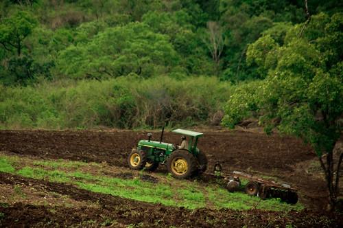 Africa November 2009-115