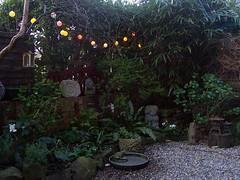 (Romany Soup) Tags: colour garden interiors