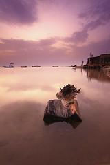 Drifting (©Helminadia Ranford) Tags: wood sunset seascape beach canon photography bahrain dusk passion drifting helminadia hamala eos50d justclouds canonlens1022mm