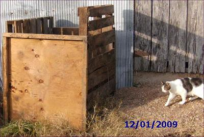 2nd view of the compost bin, plus 1 of our cats - Moon