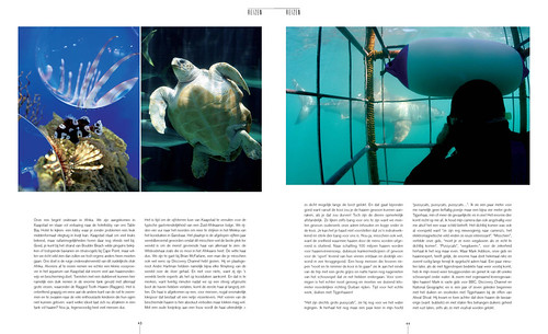 Sharks & Hotels for Tulp Magazine, pages 3&4