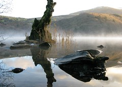miSty mOrning in SnOwdOnia (QuakaJaQ) Tags: light sun mist snow mountains tree water wales sunrise canon powershot grasses snowdonia distillery 2009 riceworld g9 greatphotographers mywinners magicalbeauty platinumheartaward goldenplanet fabulousplanet platinumplanet gettyimagescallforartists eliteplanet