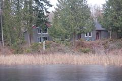 6910 on the Lake (PJ Peterson) Tags: frozenlake kitsapcounty bucklake hansvillewashington