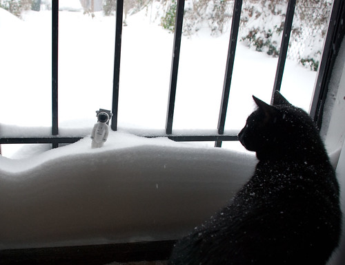 Astropen gets a visit from the alien Snow Kitteh in jail.
