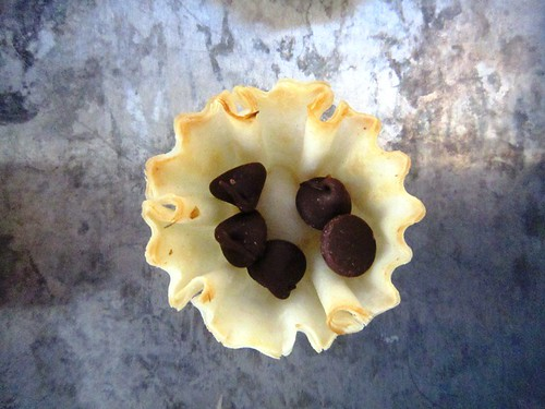 Chocolate chips in a shell
