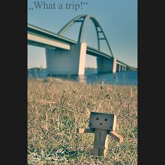 What a trip! (Oliver Totzke) Tags: bridge canon germany toy island days insel kit 365 1855 brücke efs fehmarn 30d danbo revoltech danboard