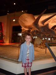 Sebastian & Triceratops