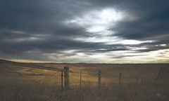storm's a brewin' (rockinmonique) Tags: alberta prairie fence gold blue light bigsky feild harvest moniquew canon canont6s sigma copyright2017moniquew