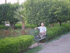 (Mohamed Amarochan) Tags: garden morocco maroc marrakech koutoubia