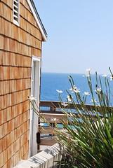 Ocean View (snedegar3) Tags: ocean sea beach seaside sand shingles cottage bluesky woodenfence greenplants woodenhouse oceanview beachplants